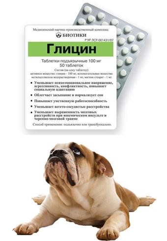Глицин для собаки