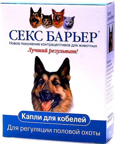 seks-barer-annotatsiya