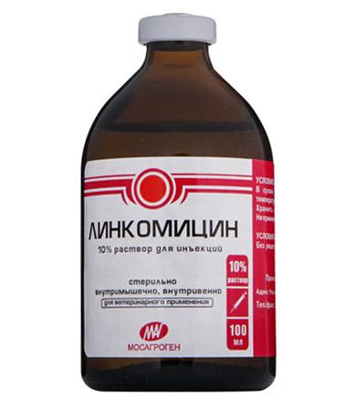 Линкомицин - 100 мл