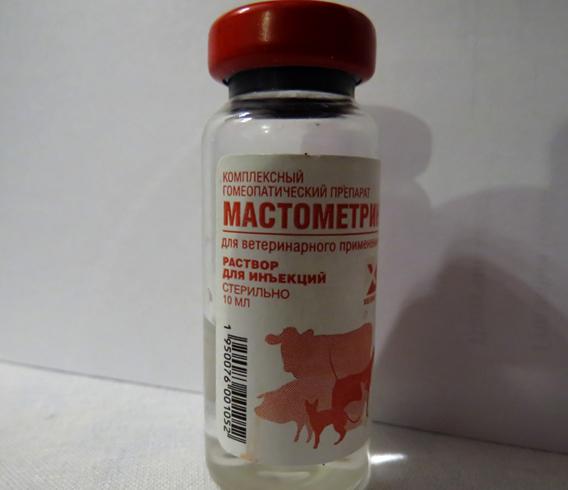 Ампула мастомерина