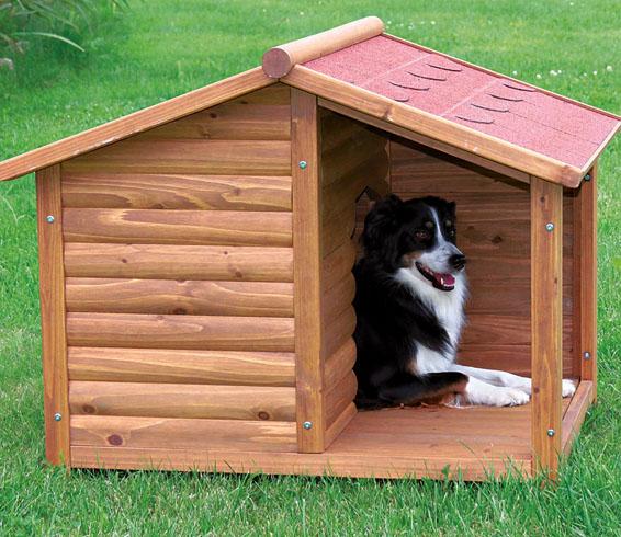 Собачка в будке