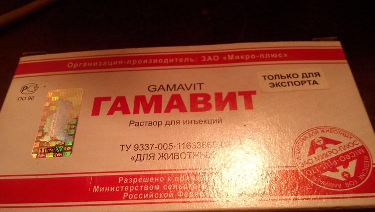 Раствор Гамавит