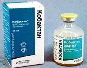 Антибиотик Кобактан для собак