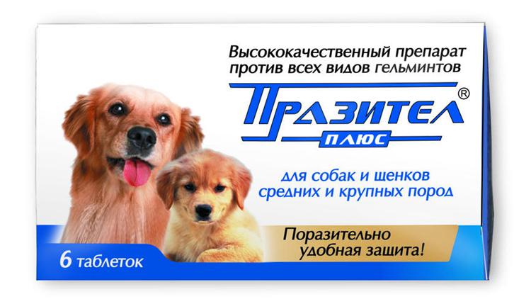 Празител - таблетки