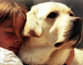 Лучшие породы собак для маленького ребенка