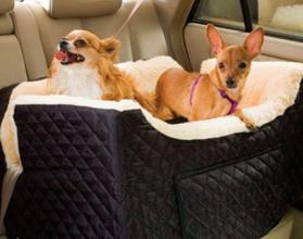 Как правильно перевезти собаку в машине