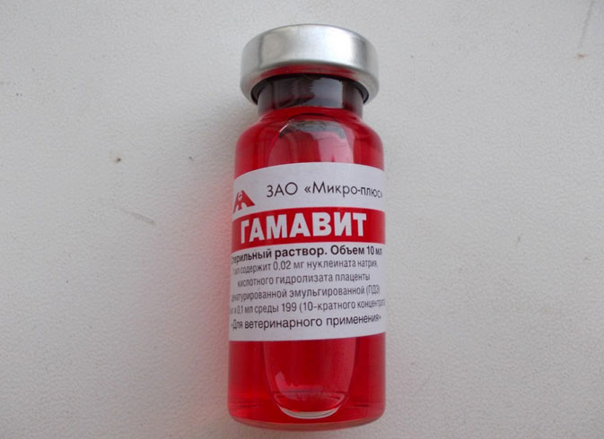 Гамавит - 10 мл.