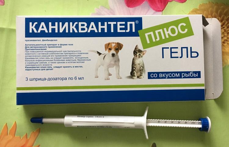 Гель для собак