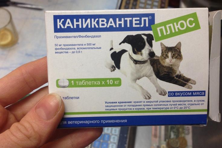 Каниквантел для псов