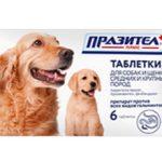 Таблетки Празител для собак: описание, инструкция и применение