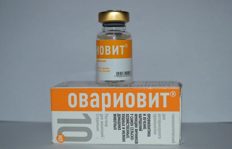 Овариовит в ампулах