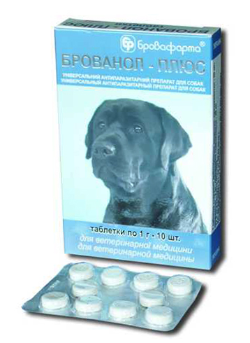 Упаковка из 10 таблеток