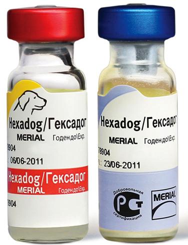 Вакцина Гексадог